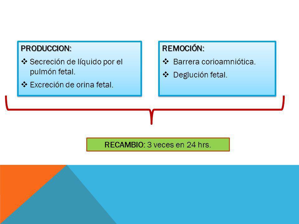 PRODUCCION: Secreción de líquido por el pulmón fetal. Excreción de orina fetal. REMOCIÓN: Barrera corioamniótica.