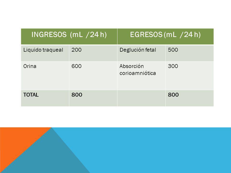 INGRESOS (mL /24 h) EGRESOS (mL /24 h)