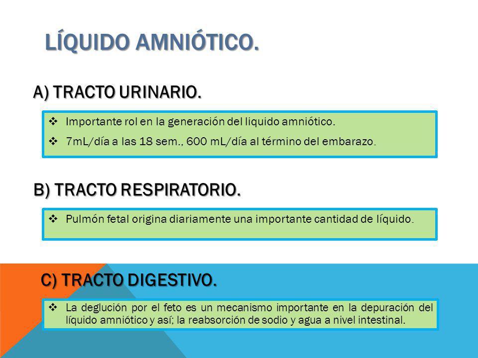 Líquido amniótico. A) TRACTO URINARIO. B) TRACTO RESPIRATORIO.