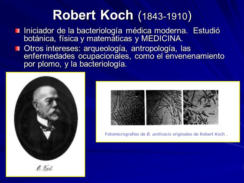 Robert Koch (1843-1910) Iniciador de la bacteriología médica moderna. Estudió botánica, física y matemáticas y MEDICINA.