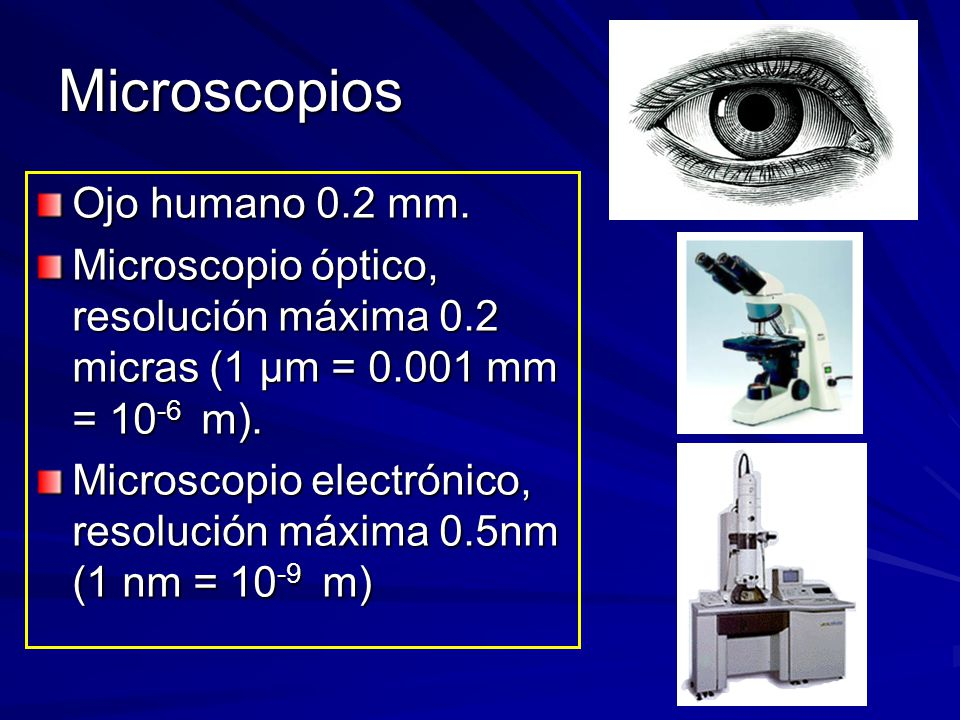 Microscopios Ojo humano 0.2 mm.
