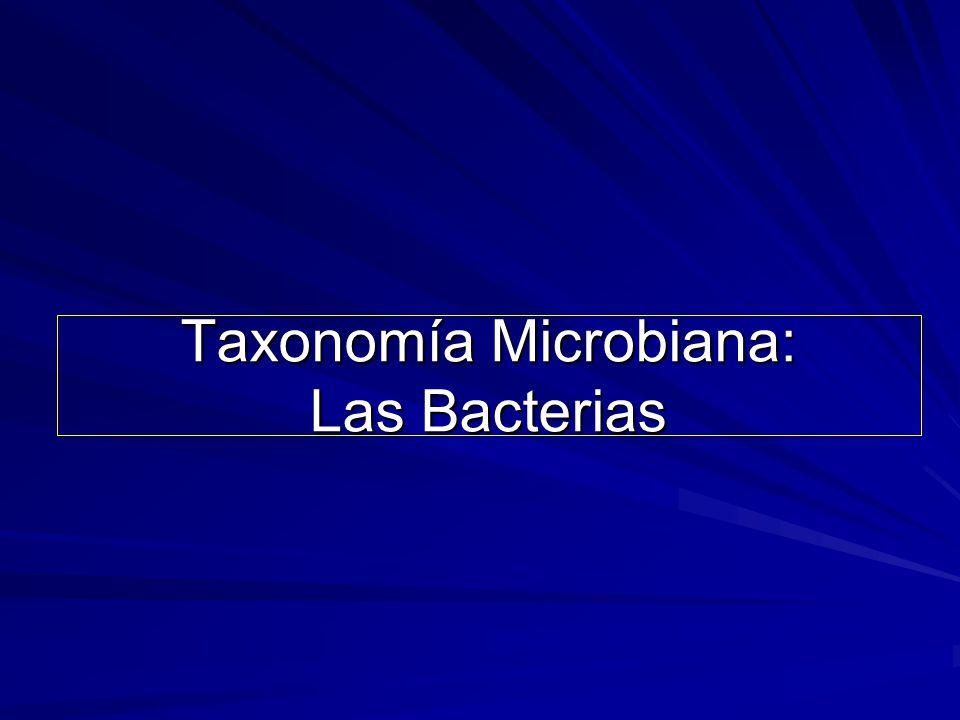 Taxonomía Microbiana: Las Bacterias