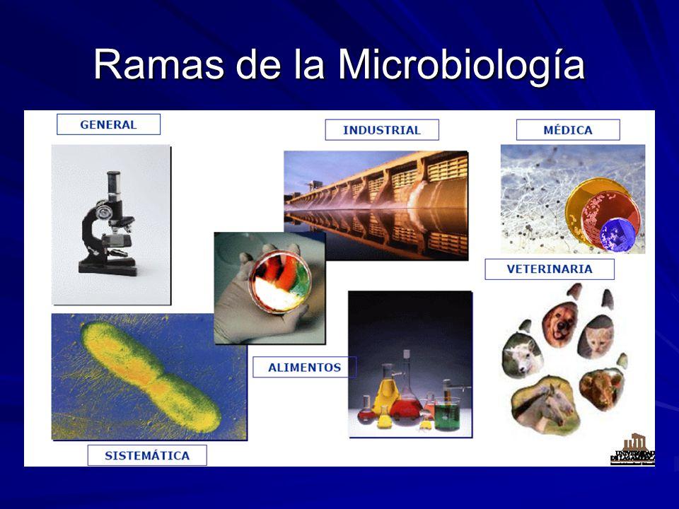 Ramas de la Microbiología