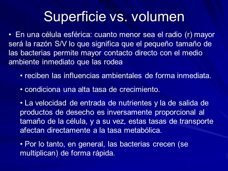 Superficie vs. volumen