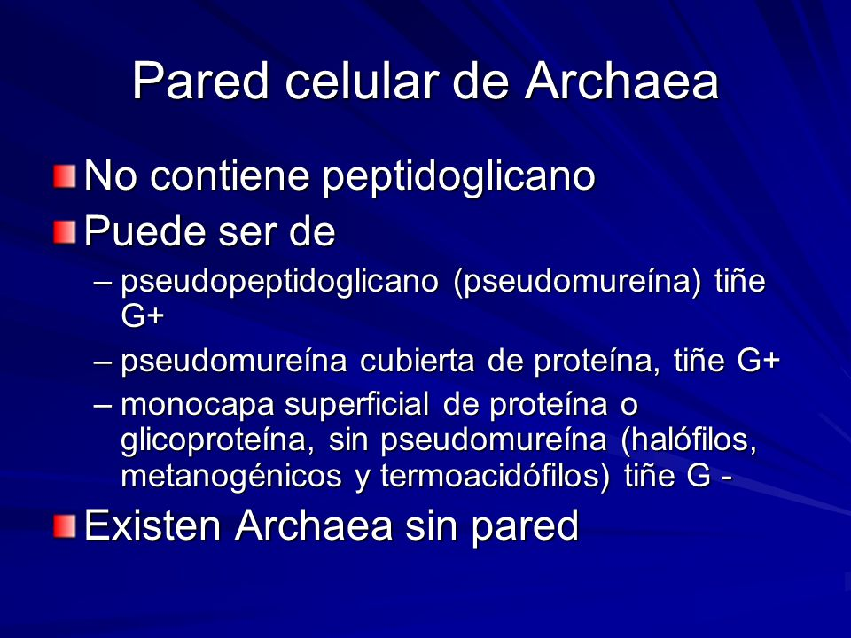 Pared celular de Archaea