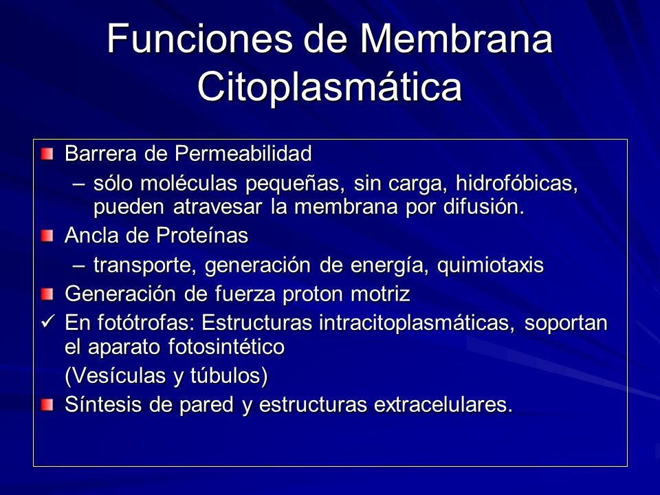 Funciones de Membrana Citoplasmática