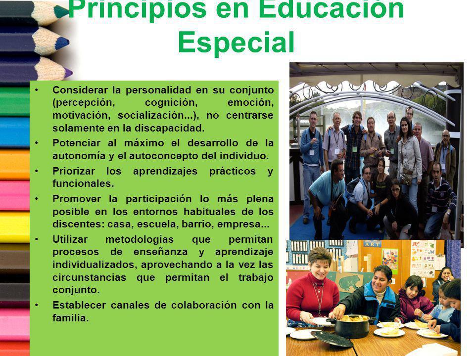 Principios en Educación Especial