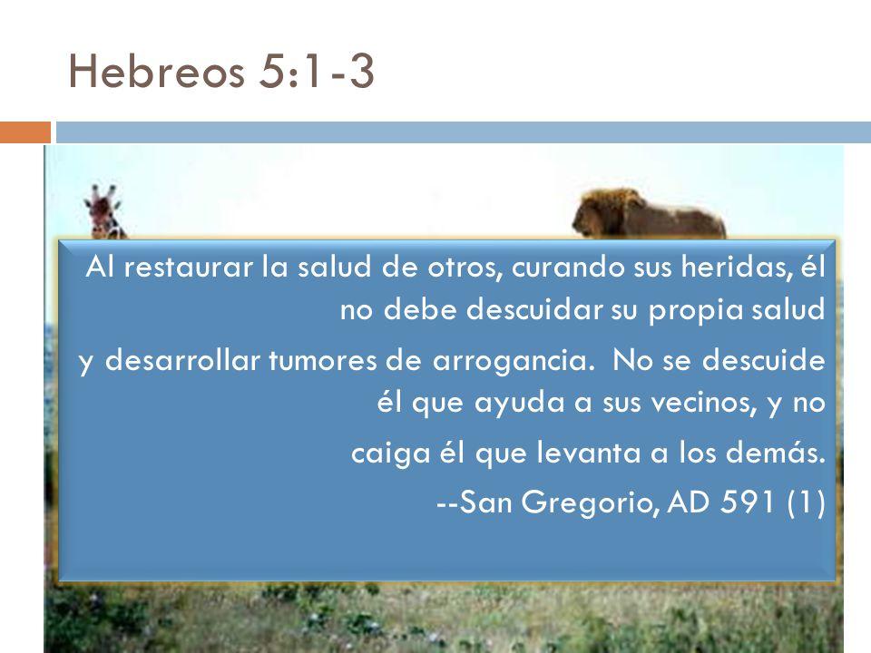 Hebreos 5:1-3 Al restaurar la salud de otros, curando sus heridas, él no debe descuidar su propia salud.