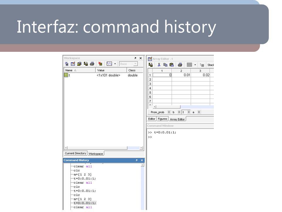 Interfaz: command history