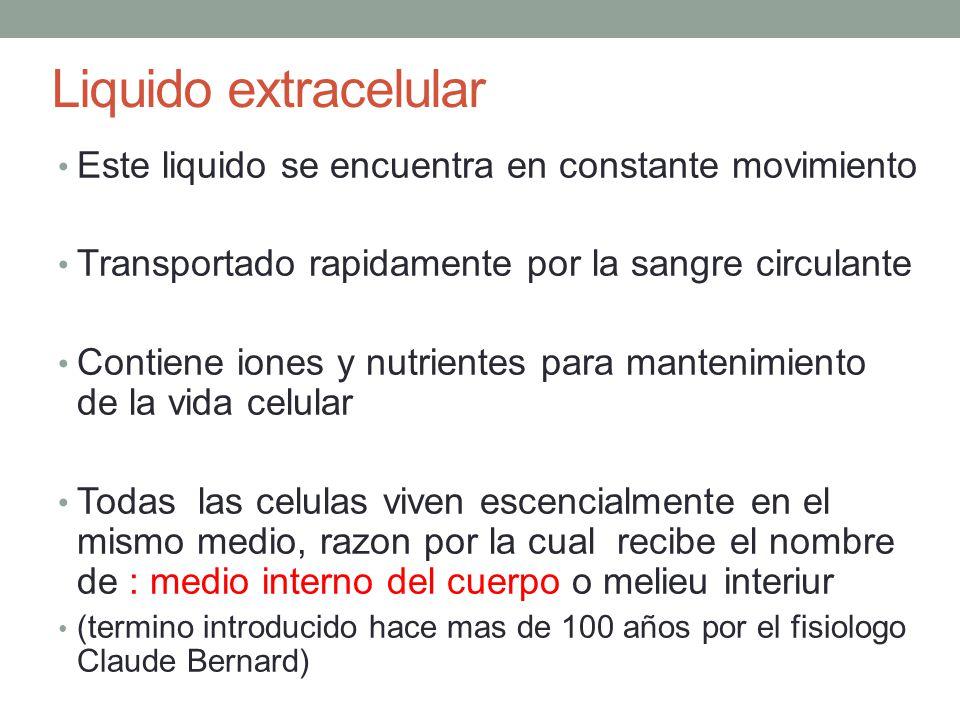 Liquido extracelular Este liquido se encuentra en constante movimiento