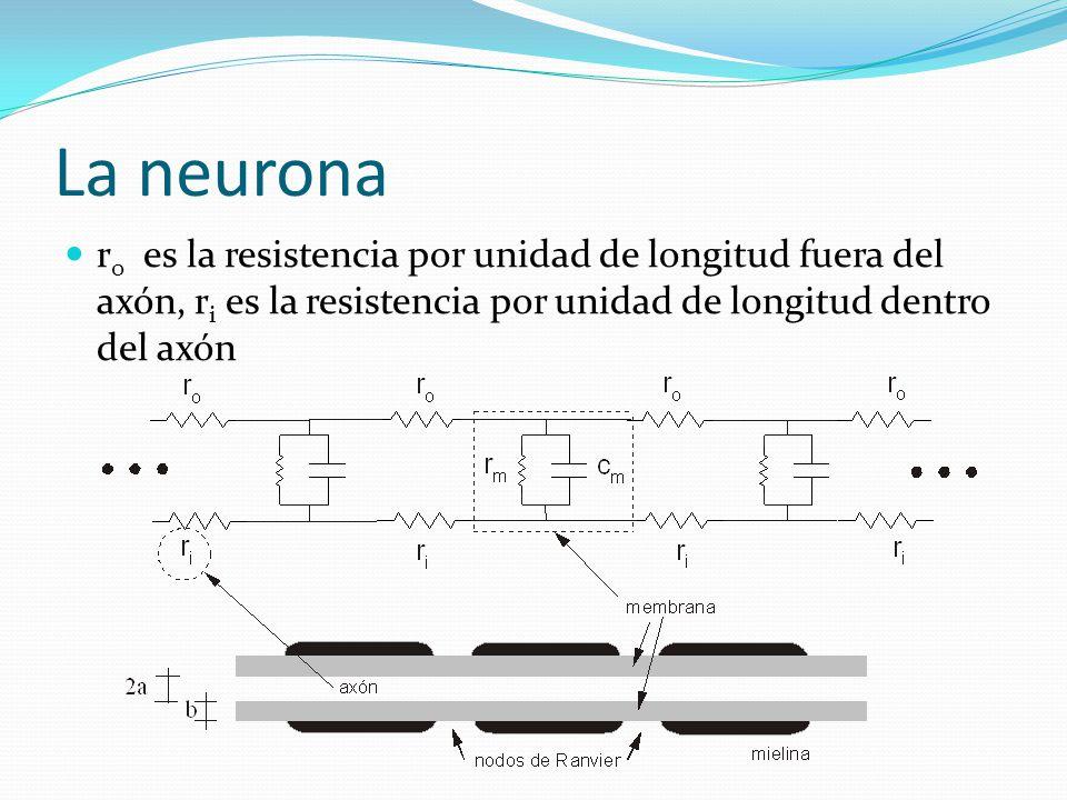 La neurona r0 es la resistencia por unidad de longitud fuera del axón, ri es la resistencia por unidad de longitud dentro del axón.