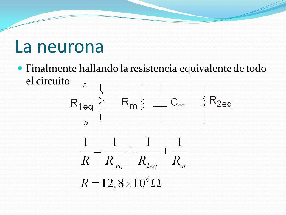 La neurona Finalmente hallando la resistencia equivalente de todo el circuito