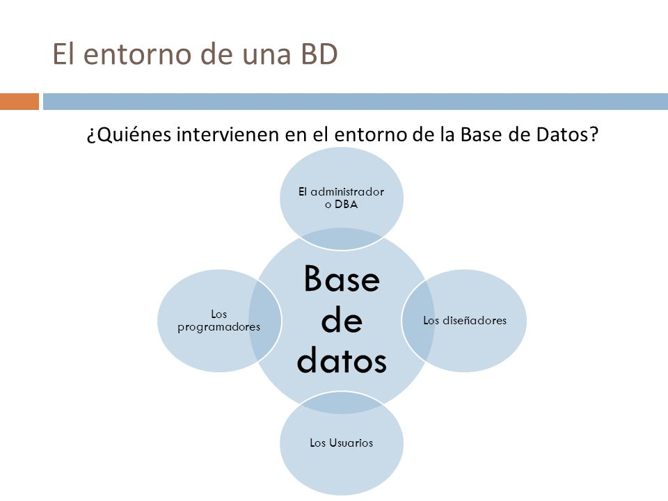 ¿Quiénes intervienen en el entorno de la Base de Datos