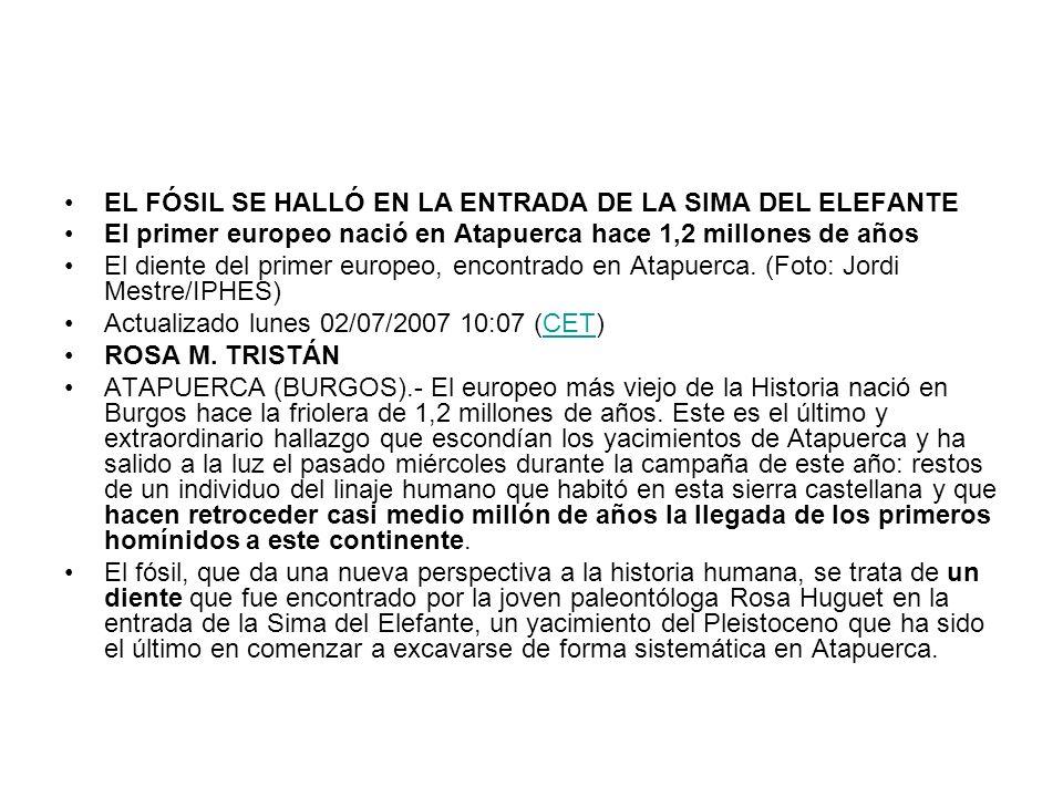 EL FÓSIL SE HALLÓ EN LA ENTRADA DE LA SIMA DEL ELEFANTE
