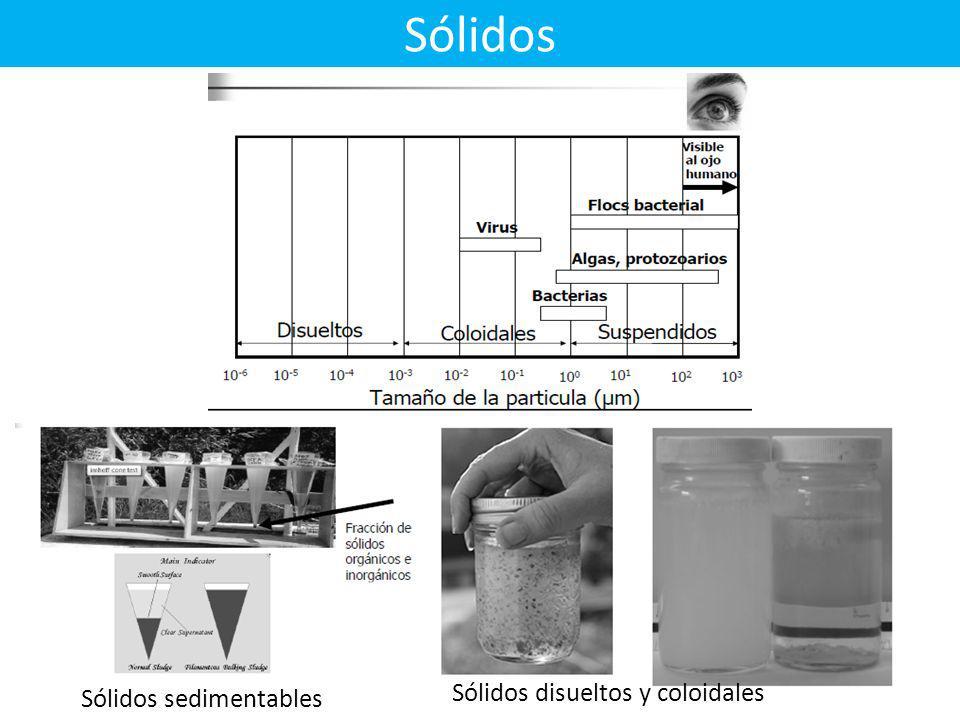 Sólidos Sólidos sedimentables Sólidos disueltos y coloidales