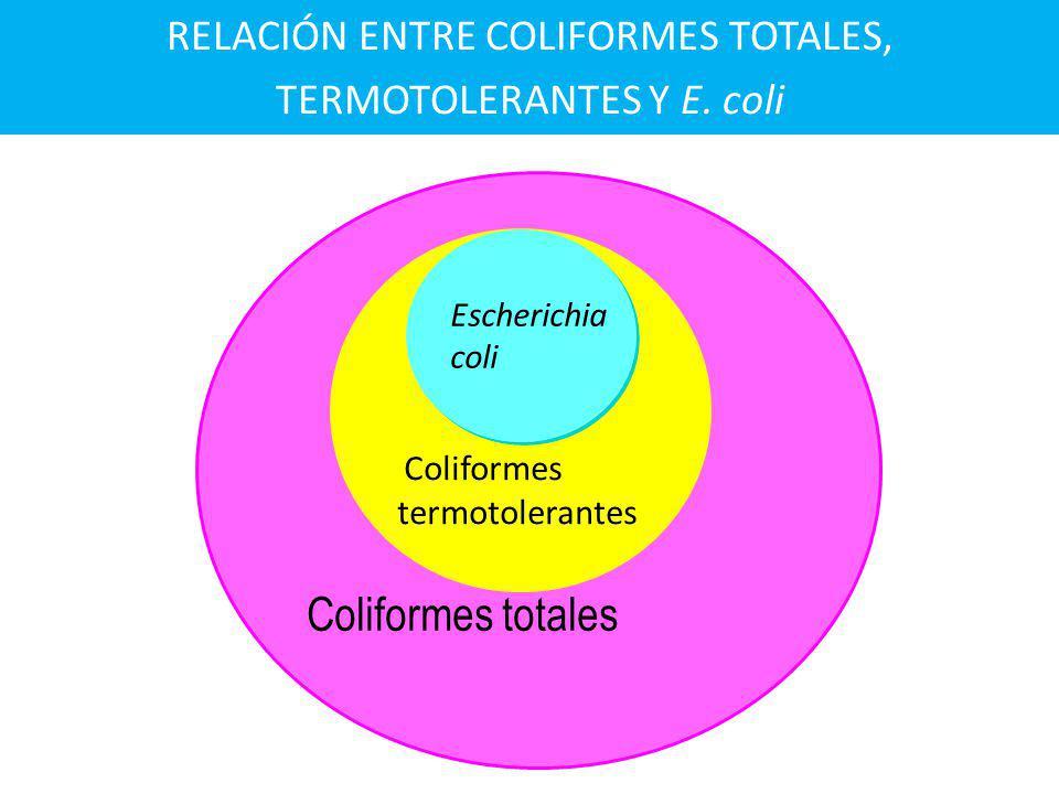 RELACIÓN ENTRE COLIFORMES TOTALES, TERMOTOLERANTES Y E. coli