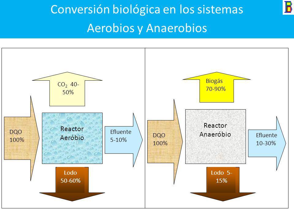 Conversión biológica en los sistemas Aerobios y Anaerobios