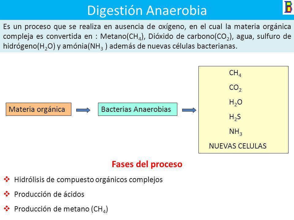 Digestión Anaerobia Fases del proceso