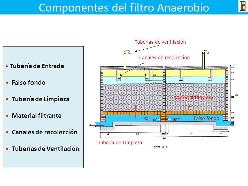Componentes del filtro Anaerobio