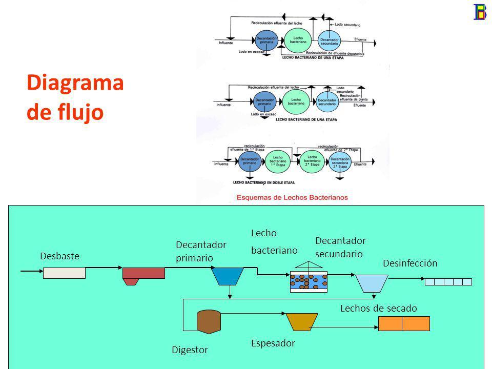 Diagrama de flujo Desbaste Desinfección Decantador primario Lecho