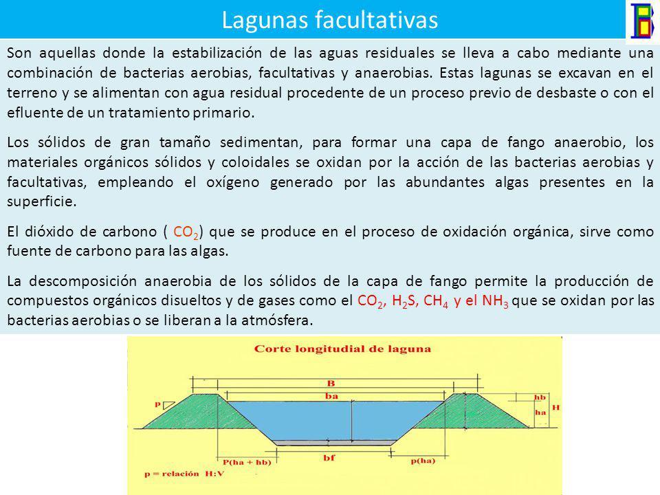 Lagunas facultativas