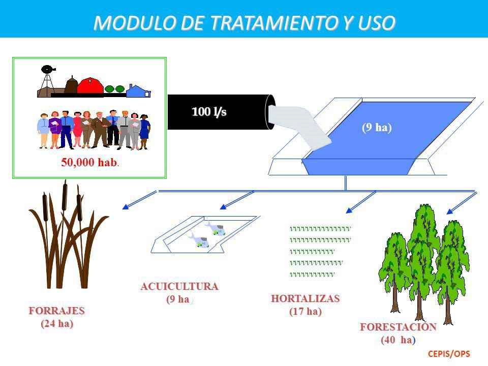 MODULO DE TRATAMIENTO Y USO