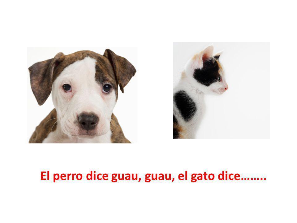 El perro dice guau, guau, el gato dice……..