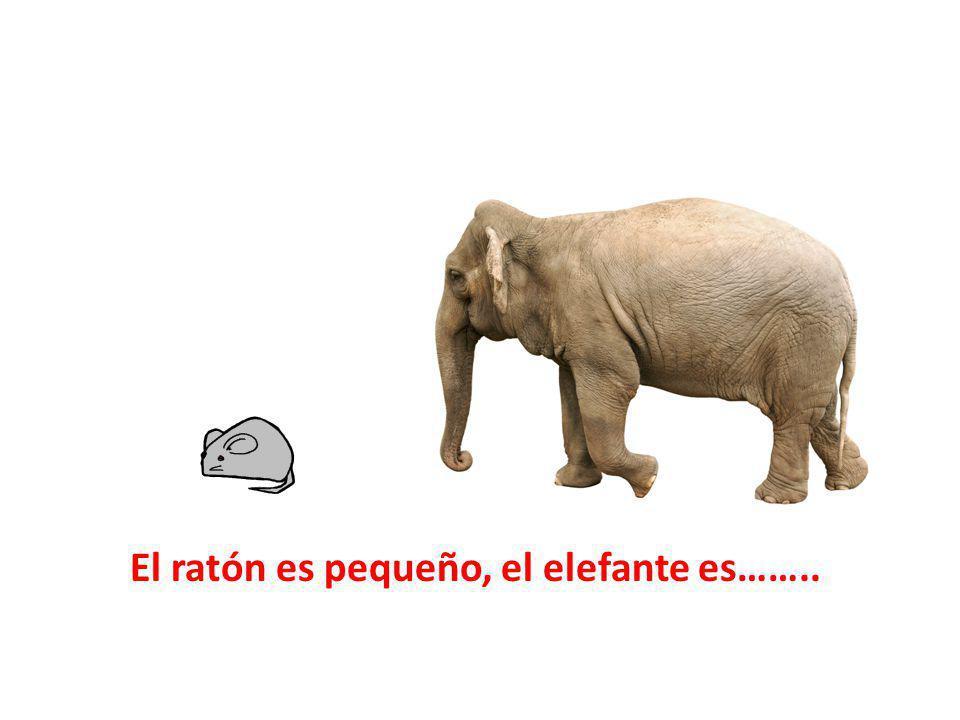 El ratón es pequeño, el elefante es……..