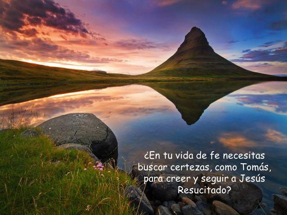 ¿En tu vida de fe necesitas buscar certezas, como Tomás, para creer y seguir a Jesús Resucitado