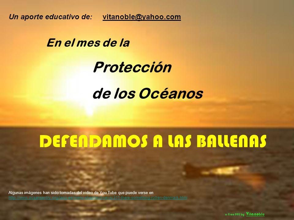 CRISIS DEFENDAMOS A LAS BALLENAS Protección de los Océanos
