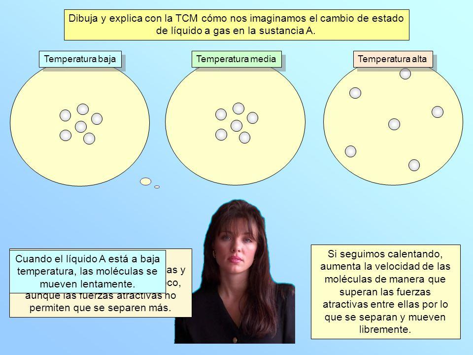 Dibuja y explica con la TCM cómo nos imaginamos el cambio de estado