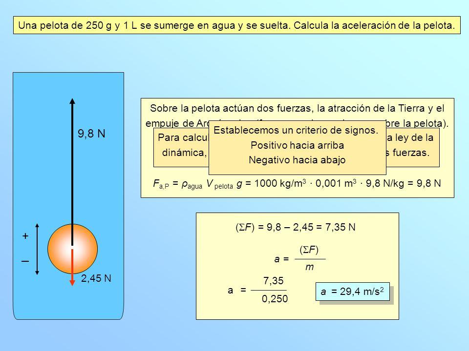 Una pelota de 250 g y 1 L se sumerge en agua y se suelta