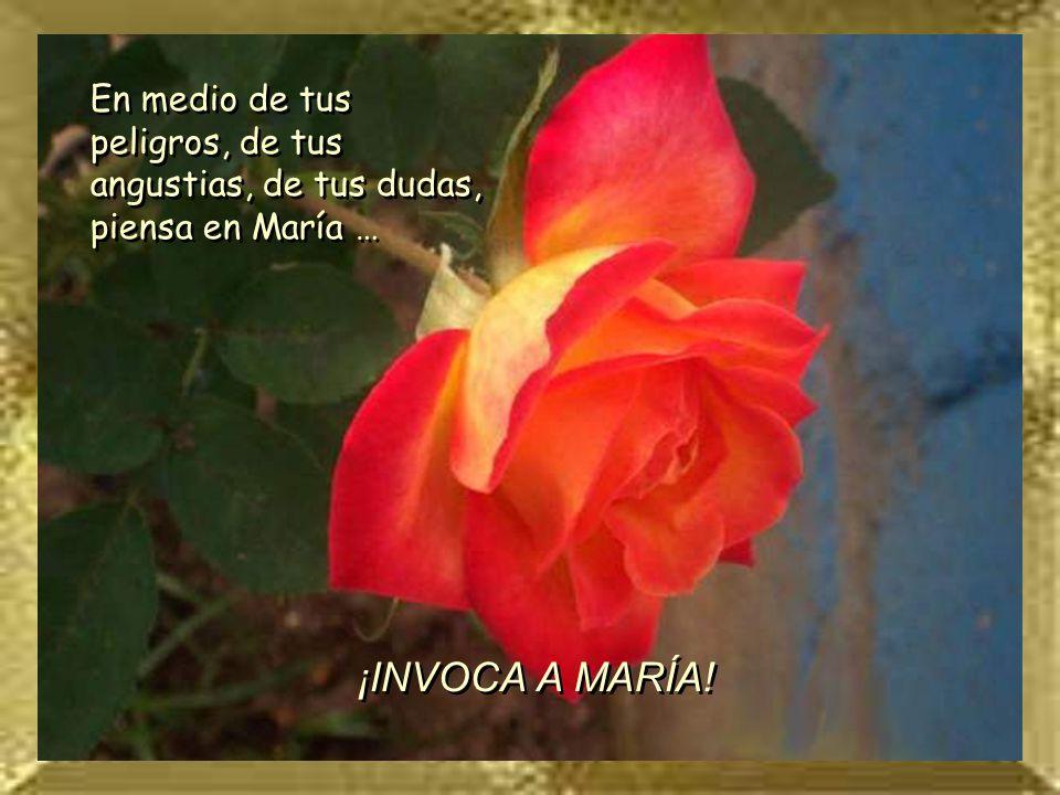En medio de tus peligros, de tus angustias, de tus dudas, piensa en María …