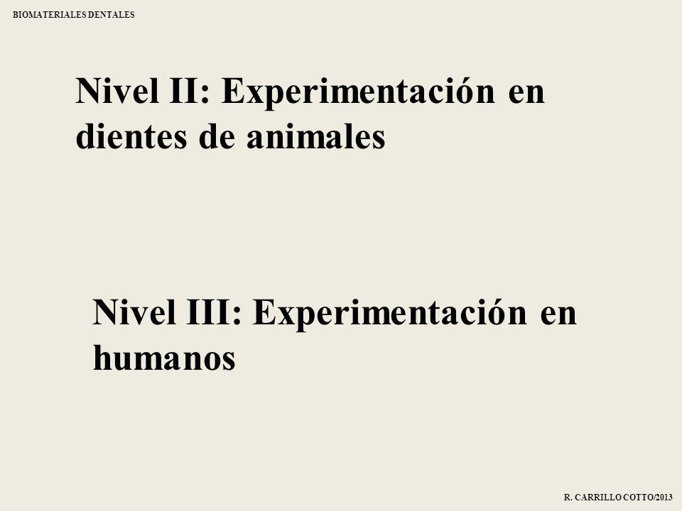 Nivel II: Experimentación en dientes de animales