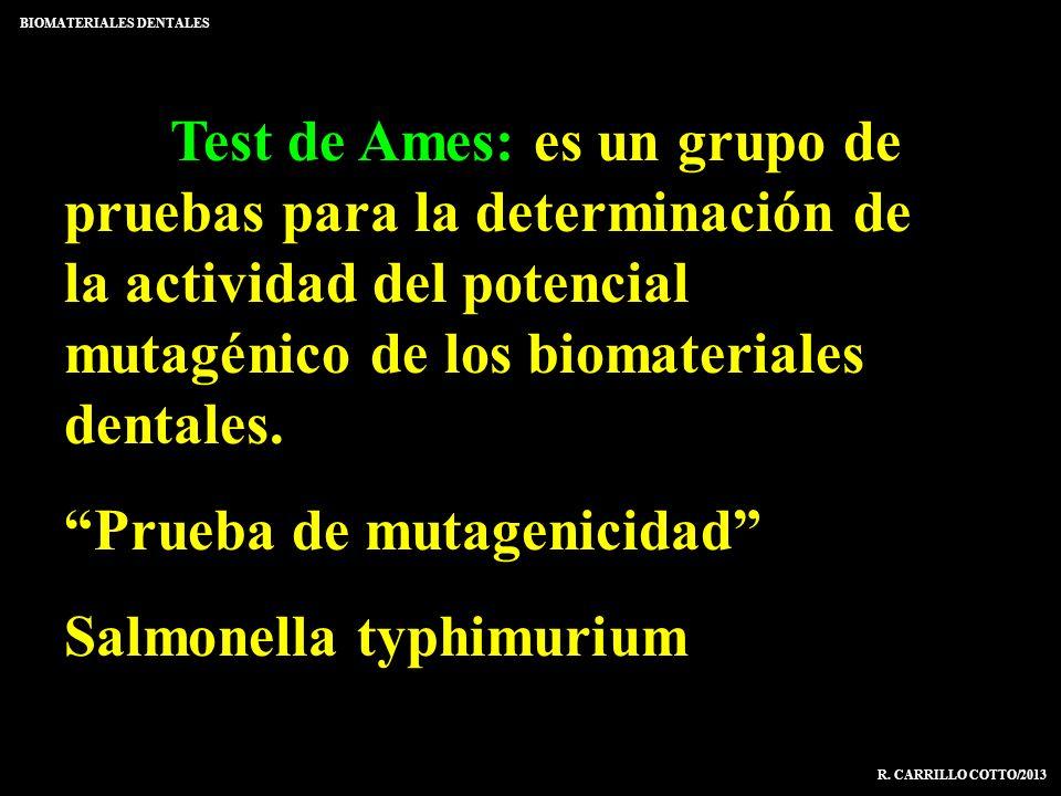 Prueba de mutagenicidad Salmonella typhimurium