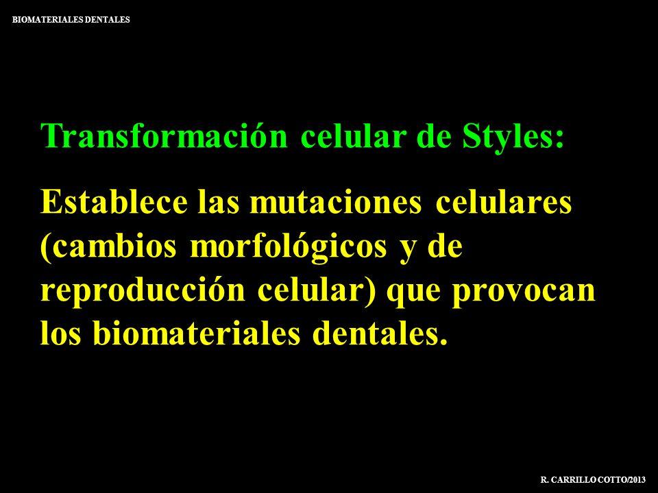 Transformación celular de Styles: