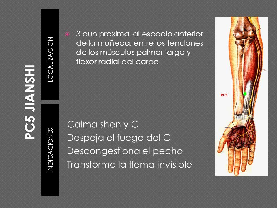 PC5 JIANSHILOCALIZACION. 3 cun proximal al espacio anterior de la muñeca, entre los tendones de los músculos palmar largo y flexor radial del carpo.