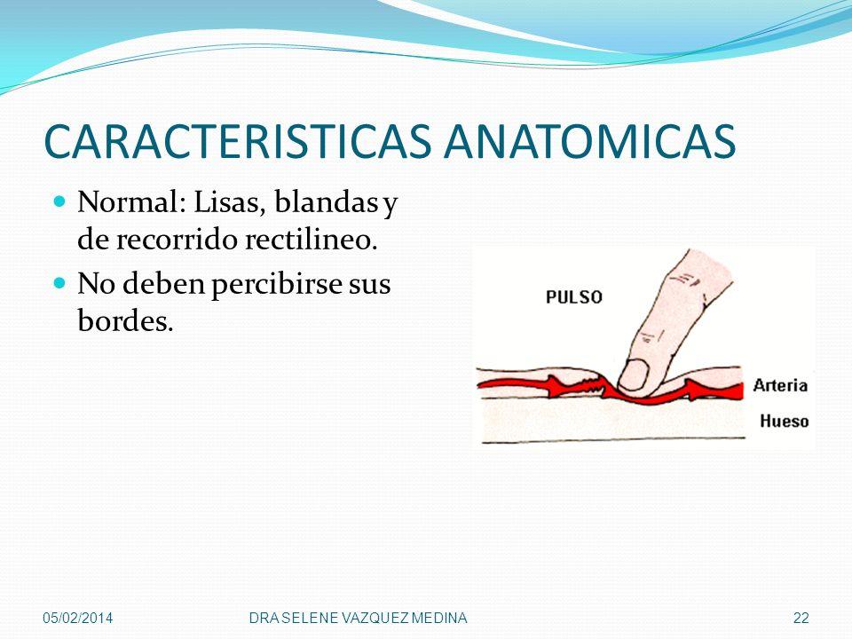 CARACTERISTICAS ANATOMICAS