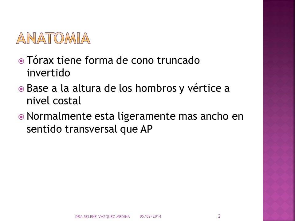 ANATOMIA Tórax tiene forma de cono truncado invertido