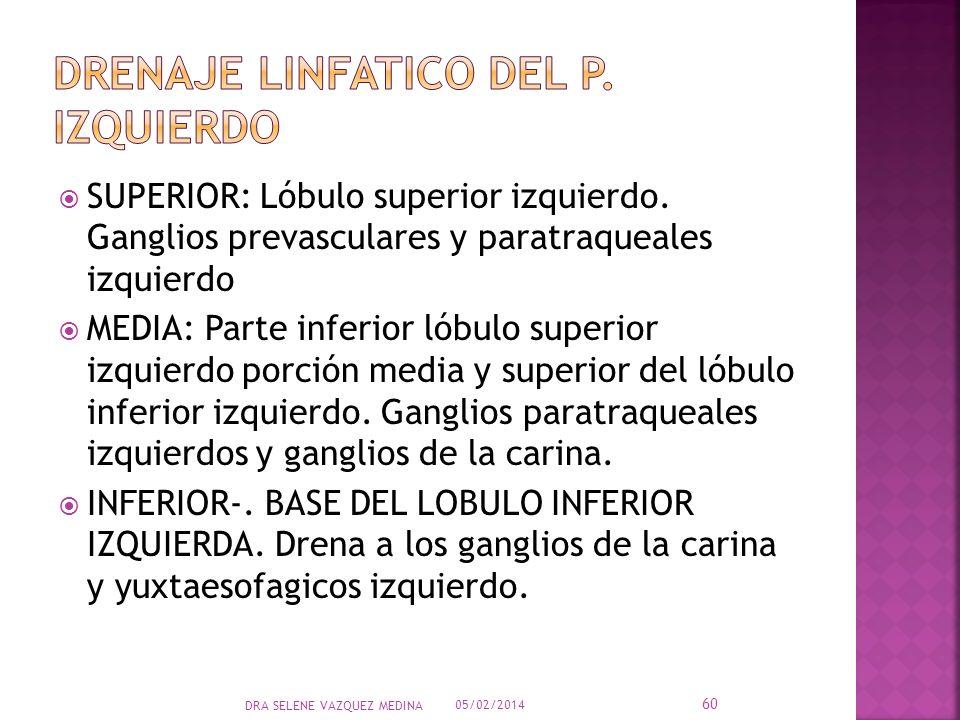 Drenaje linfatico del P. Izquierdo