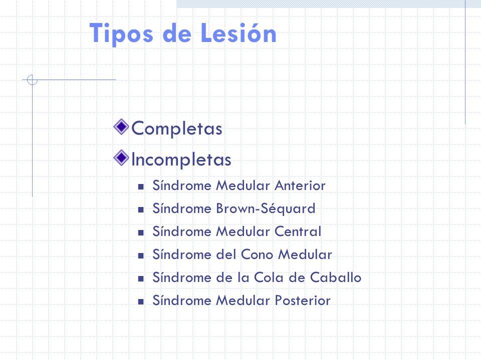 Tipos de Lesión Completas Incompletas Síndrome Medular Anterior