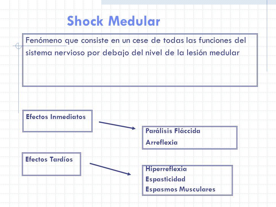 Shock Medular Fenómeno que consiste en un cese de todas las funciones del. sistema nervioso por debajo del nivel de la lesión medular.
