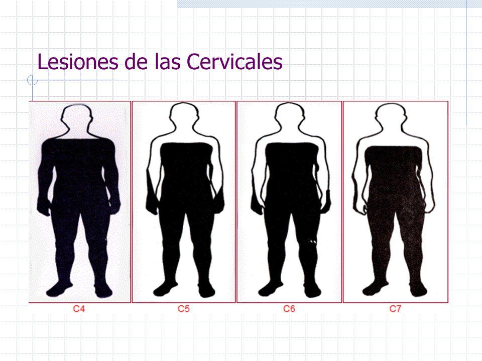 Lesiones de las Cervicales
