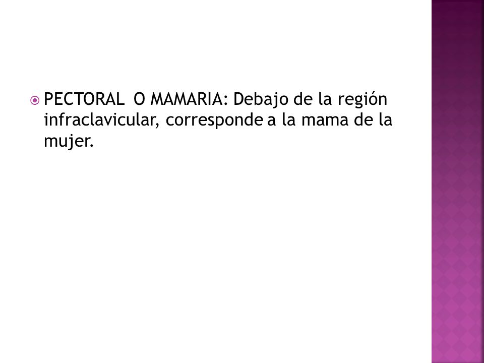 PECTORAL O MAMARIA: Debajo de la región infraclavicular, corresponde a la mama de la mujer.