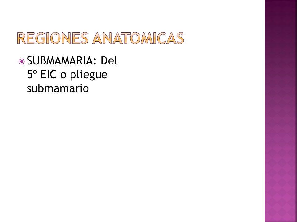 REGIONES ANATOMICAS SUBMAMARIA: Del 5º EIC o pliegue submamario