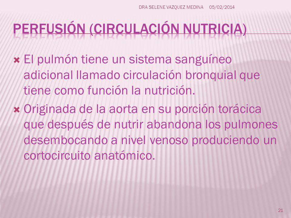 Perfusión (circulación nutricia)