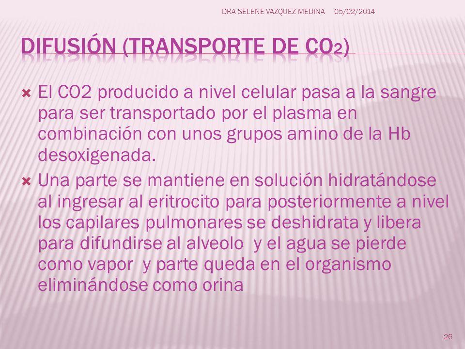 Difusión (transporte de CO2)