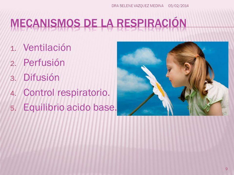 Mecanismos de la respiración