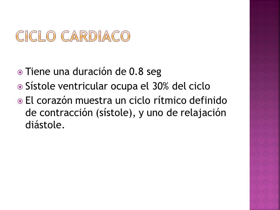CICLO CARDIACO Tiene una duración de 0.8 seg