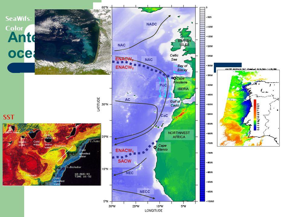 SeaWifs: Color Antecedentes: oceanografía SST